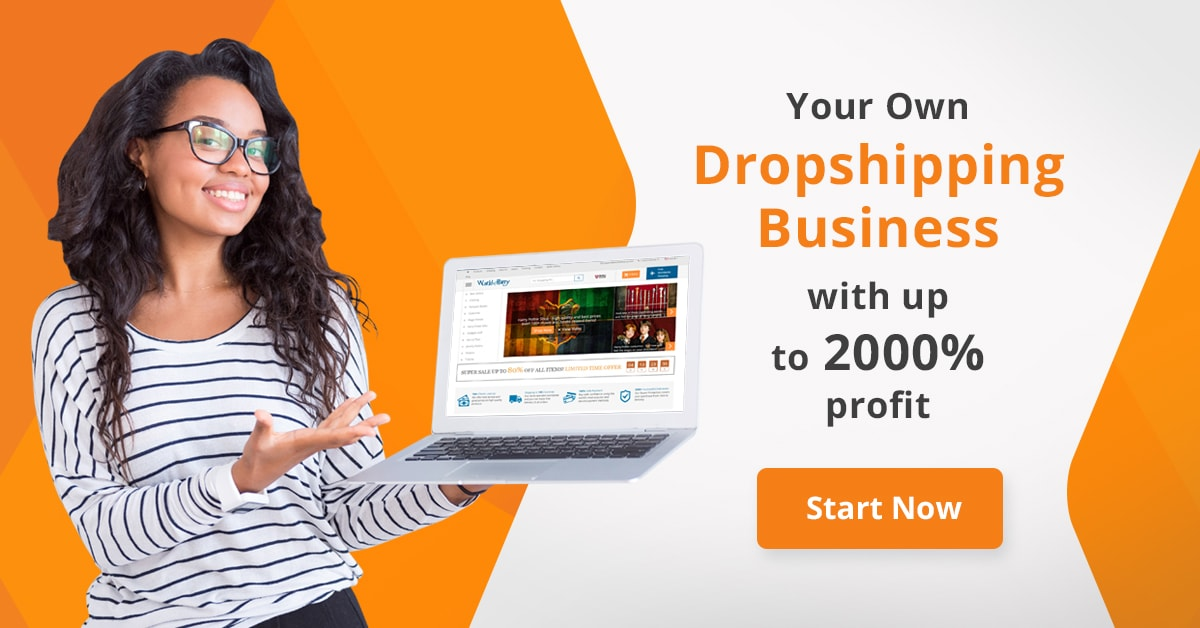 How To Start A Profitable Shopify Dropshipping Store 2